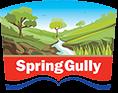 Spring Gully